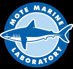 PMP Alumni: Around Town at Mote Marine Laboratory & Aquarium