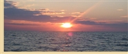Fall 5:30PM Cape May Whale Watcher Prime Rib Buffet Dinner Cruise