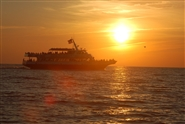Fall Cape May Whale Watcher Scenic Dinner Cruise - 5:30 PM