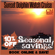 Fall Dolphin Watch Sunset Cruise 5:30 PM