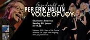 Per Erik Hallin & Voice of Joy