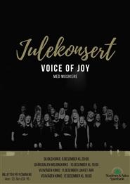 Voice of Joy - Julekonsert Skjold kirke